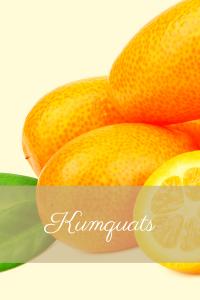 Citrus kamquats