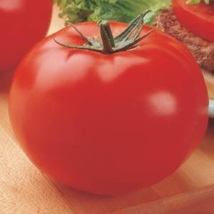Tomate Big Beef