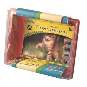 Trousse d'herbe pour les chats
