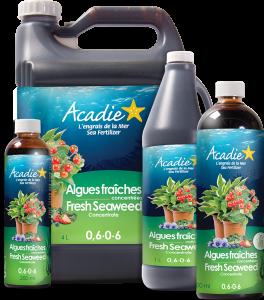 engrais naturel algues fraîches concentrées 0,6-0-6 Acadie