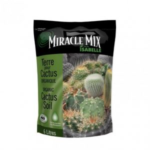Terreau organique pour cactus