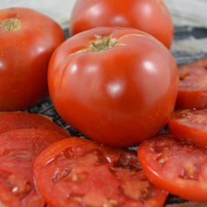 Tomate Moskovich -bio- Jardins Écoumène