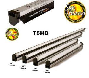 Lumière T5HO avec réflecteur 6400K
