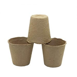 Pots de tourbe 6″ /unité