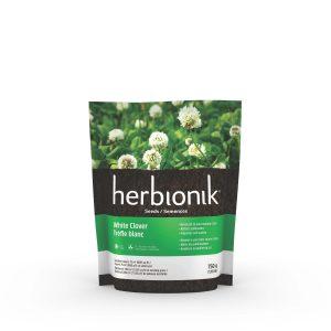 Semence de trèfle blanc – Herbionik