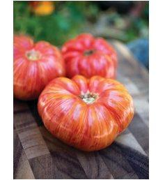 Tomate Heirloom rayée