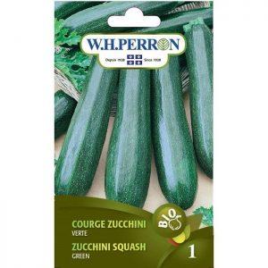 Courge Zucchini verte – Biologique