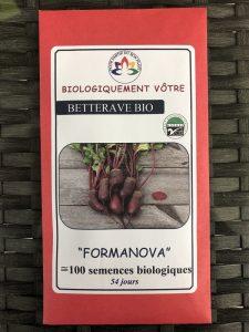 Betterave «Formanova» – Bio
