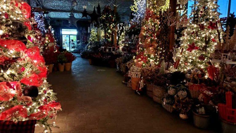 Magasin de décorations de Noël illuminé