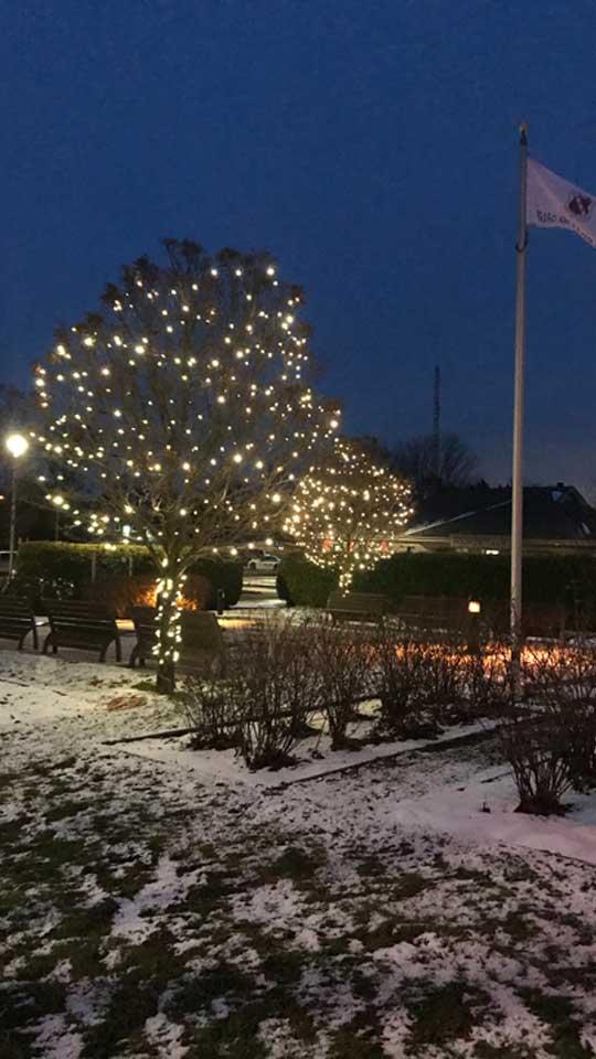 Lumières de Noël extérieures