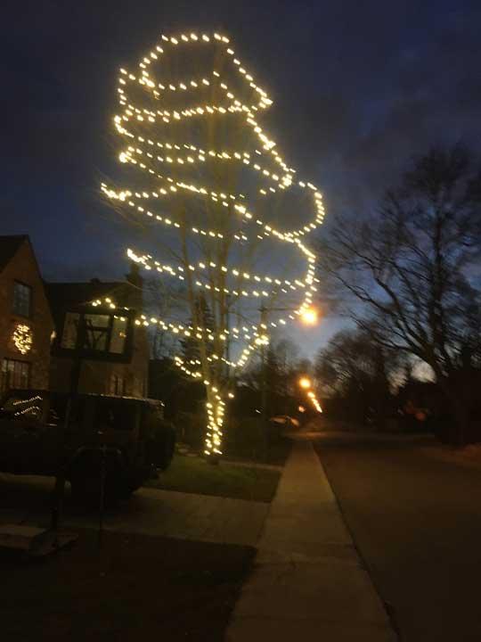 Lumières de Noël installées dans un arbre
